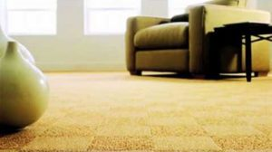 carpet cleaners windsor ca